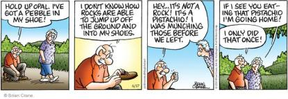 Earl finds a pistachio nut in his shoe while on a walk with Ethyl.