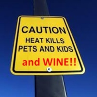 Heat kills kids, pets, and wine.