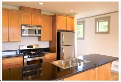 For a remodeled kitchen, I like stainless steel appliances, light-to-medium wood cabinets, and a dark countertops.