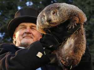 Punxsutawney Phil makes his annual appearance.